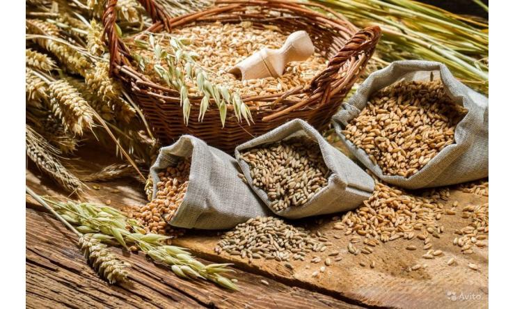 Смеситель для животноводства, компостов, комбикормов, кормов